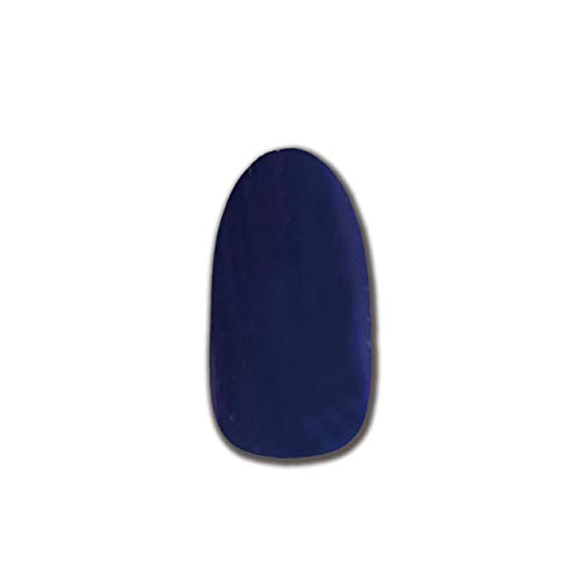 ガラス印象的な名目上のT-GEL COLLECTION カラージェル D146 ヴァイオレット 4ml