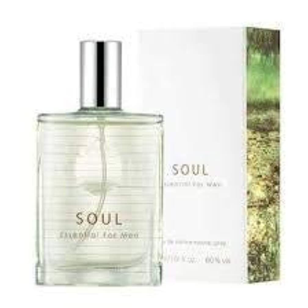 スカーフ割り当てるズボンThefaceshop Soul Essential For Men 30ml