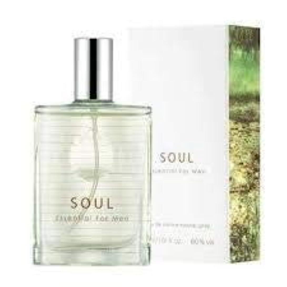 保育園土よりThefaceshop Soul Essential For Men 30ml
