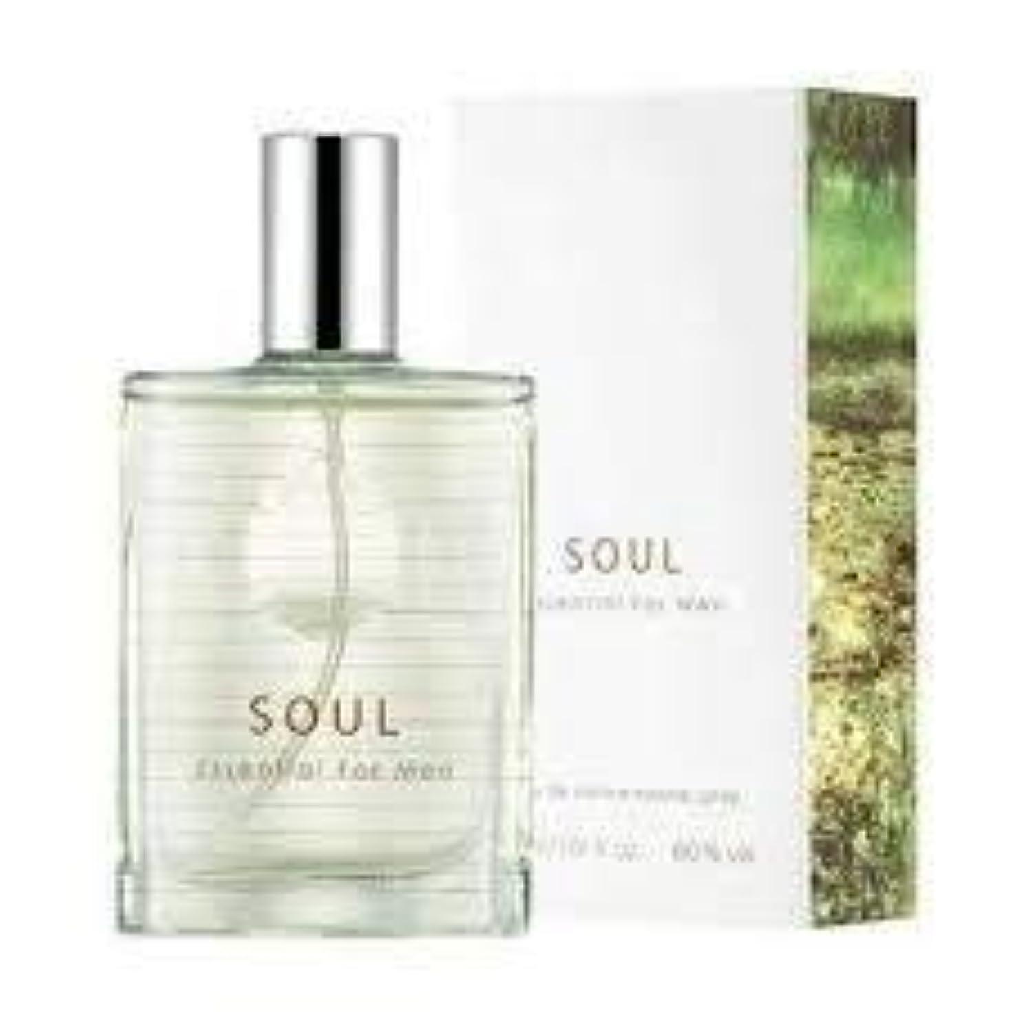 西部ハブ牛Thefaceshop Soul Essential For Men 30ml