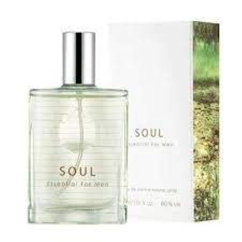 解説ネブ葡萄Thefaceshop Soul Essential For Men 30ml