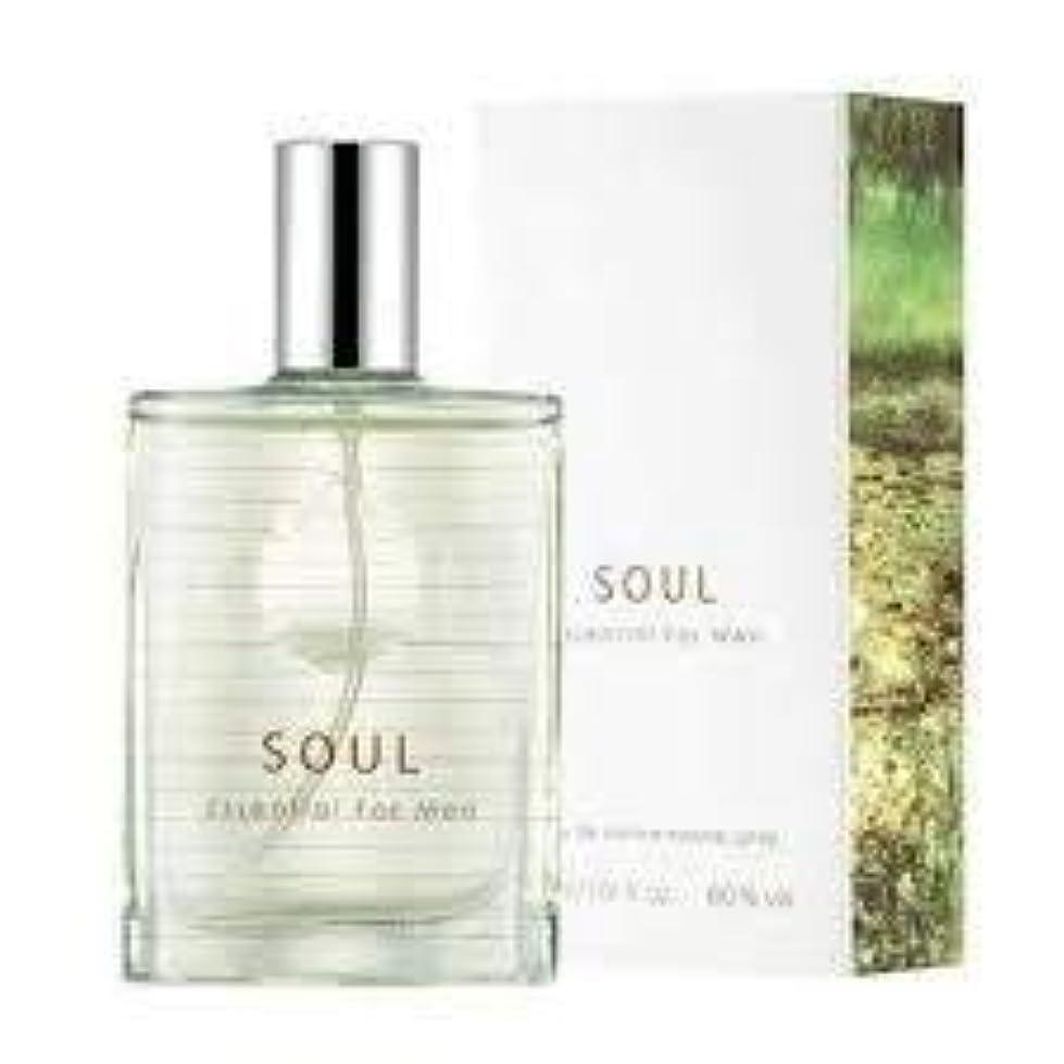 ジェスチャー湾に向かってThefaceshop Soul Essential For Men 30ml