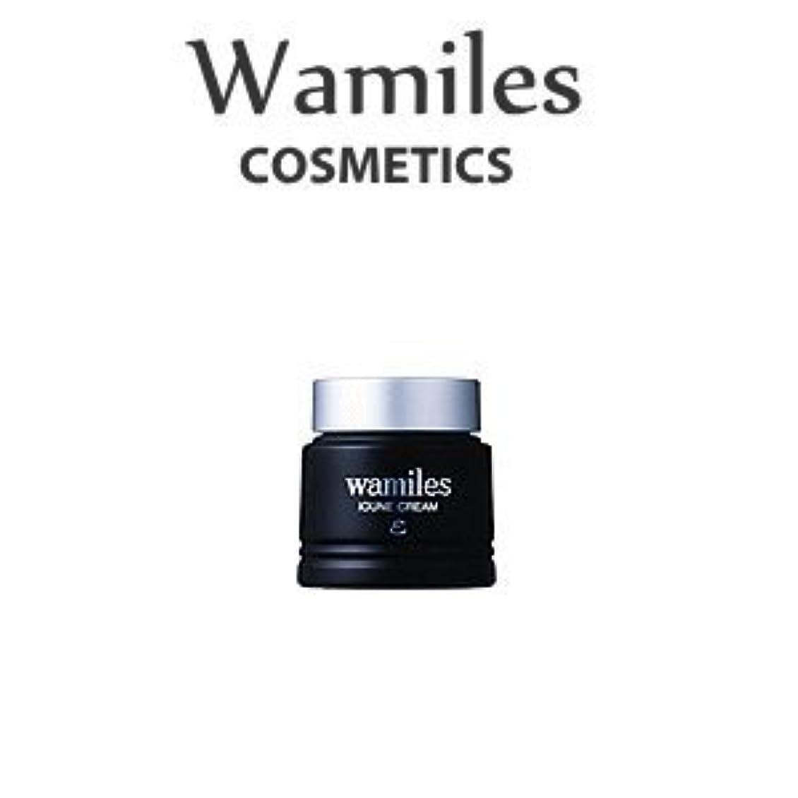 中間くま同行するwamiles/ワミレス ベーシックライン イオンヌ クリーム 53g 美容 保湿