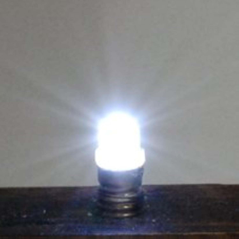E5 LED 白色電球 12V仕様