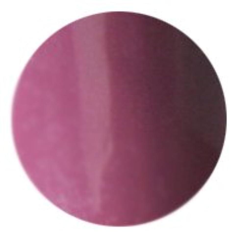 記念碑的な寝る闇AKZENTZ(アクセンツ) UV/LED アイスカラーズ 4g<BR>UL 009 ミスティックモーブ