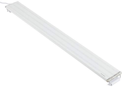 水作『ライトアップ(600)』