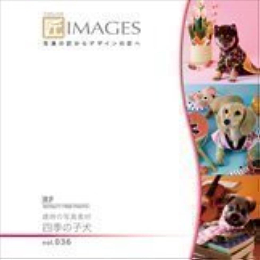 お風呂試す性格匠IMAGES Vol.036 歳時の写真素材 四季の子犬