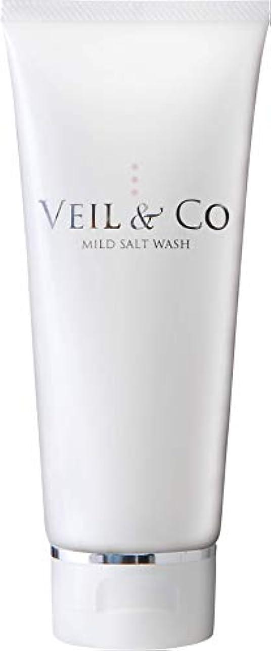 保持司令官入り口【VEIL&Co】ベールアンドコー 毛穴専用マイルドソルトウォッシュ(洗顔料) 150g