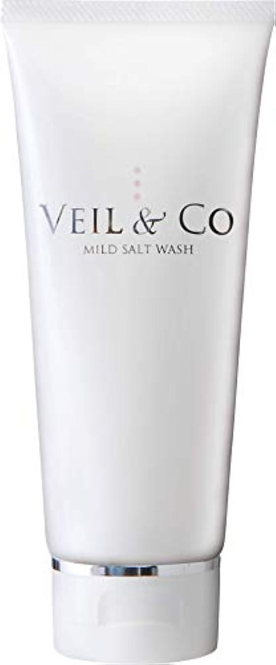 民間資金麦芽【VEIL&Co】ベールアンドコー 毛穴専用マイルドソルトウォッシュ(洗顔料) 150g