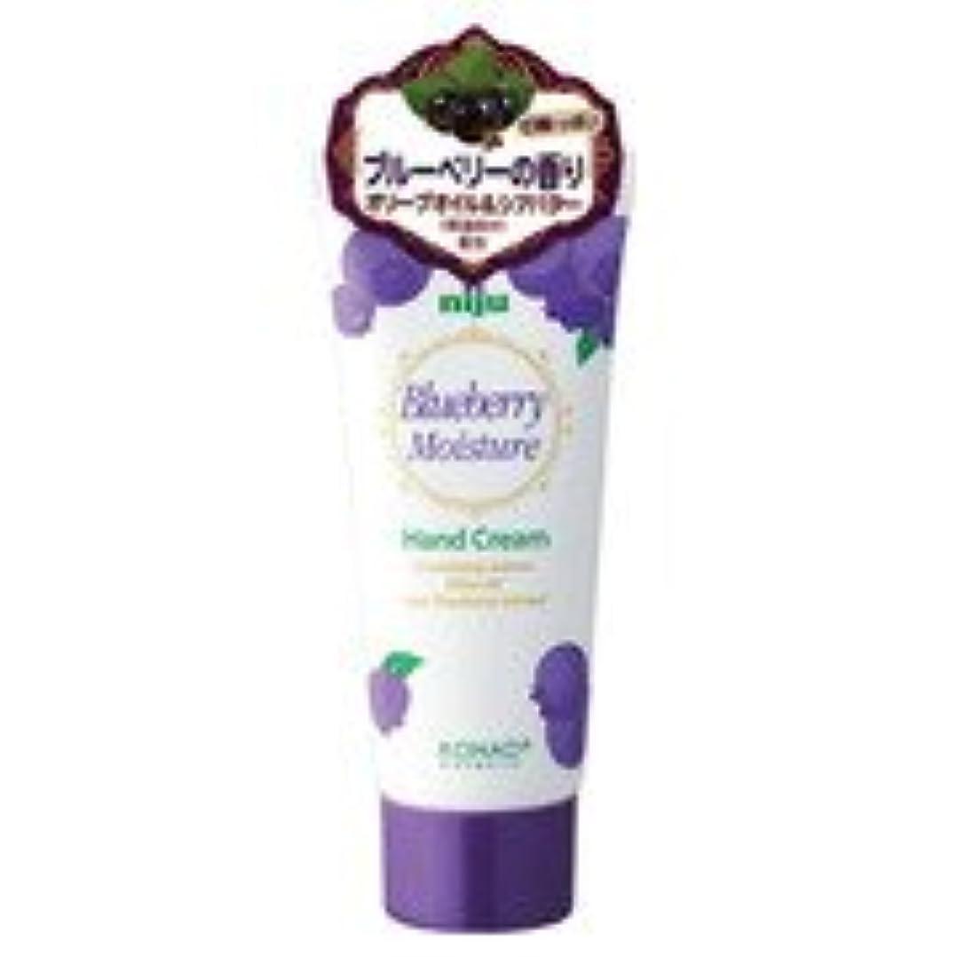 ブレイズ活性化する品揃えniju(ニジュウ) モイスチャーハンドクリーム ブルーベリーの香り 60ml