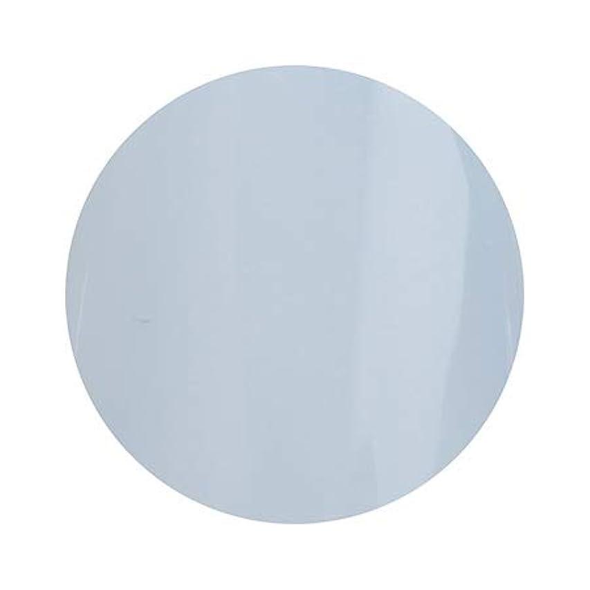 かけがえのない鉛赤字Putiel プティール カラージェル 313 サボン 2g (TOMOMIプロデュース)