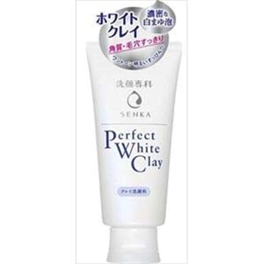 (まとめ)資生堂 専科 パーフェクト ホワイトクレイn 【×3点セット】
