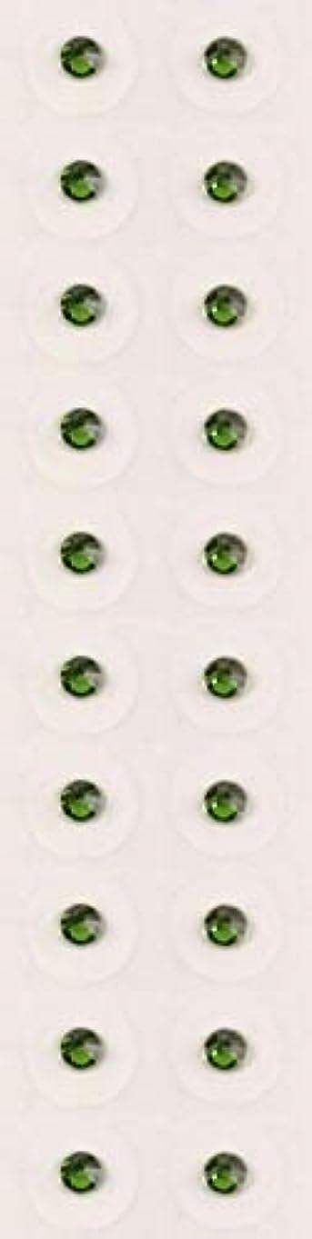刻む流行している発掘【ファーングリーン/ss9/セラミック粒】耳つぼジュエリー20粒【全50色】