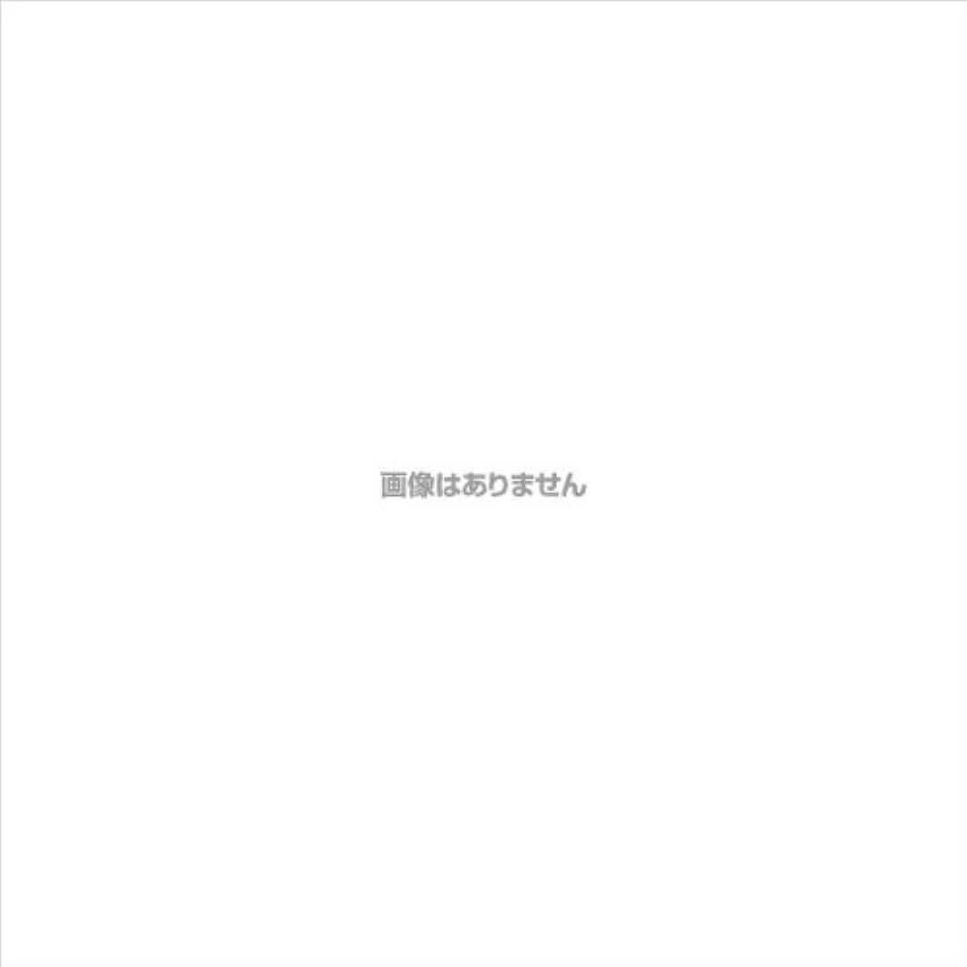 オリエンテーションセールスタックPVCグローブα 粉つき クリア / FR-5113 200枚 L ケース(10小箱入)
