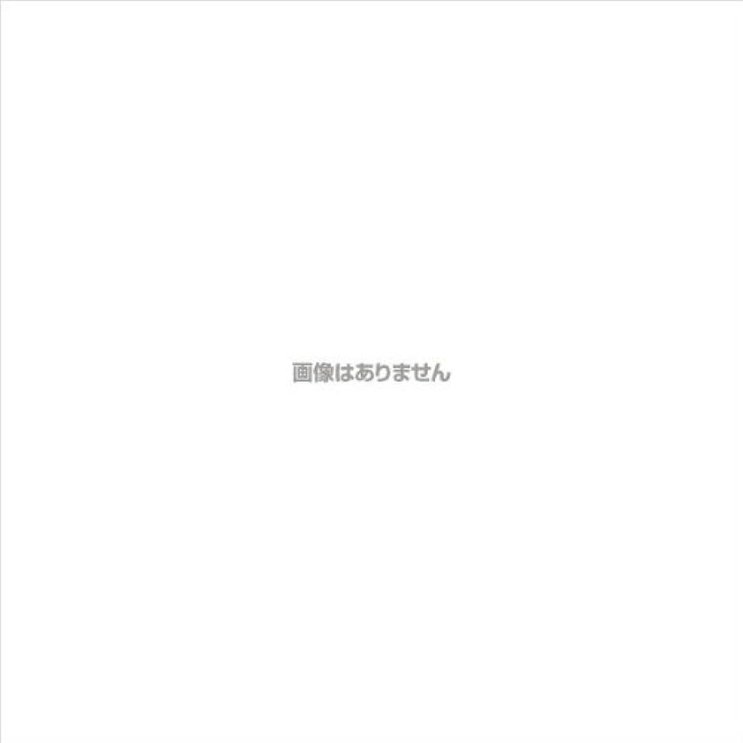 偽造ブラウンスポーツをするPVCグローブα 粉つき クリア / FR-5113 200枚 L ケース(10小箱入)