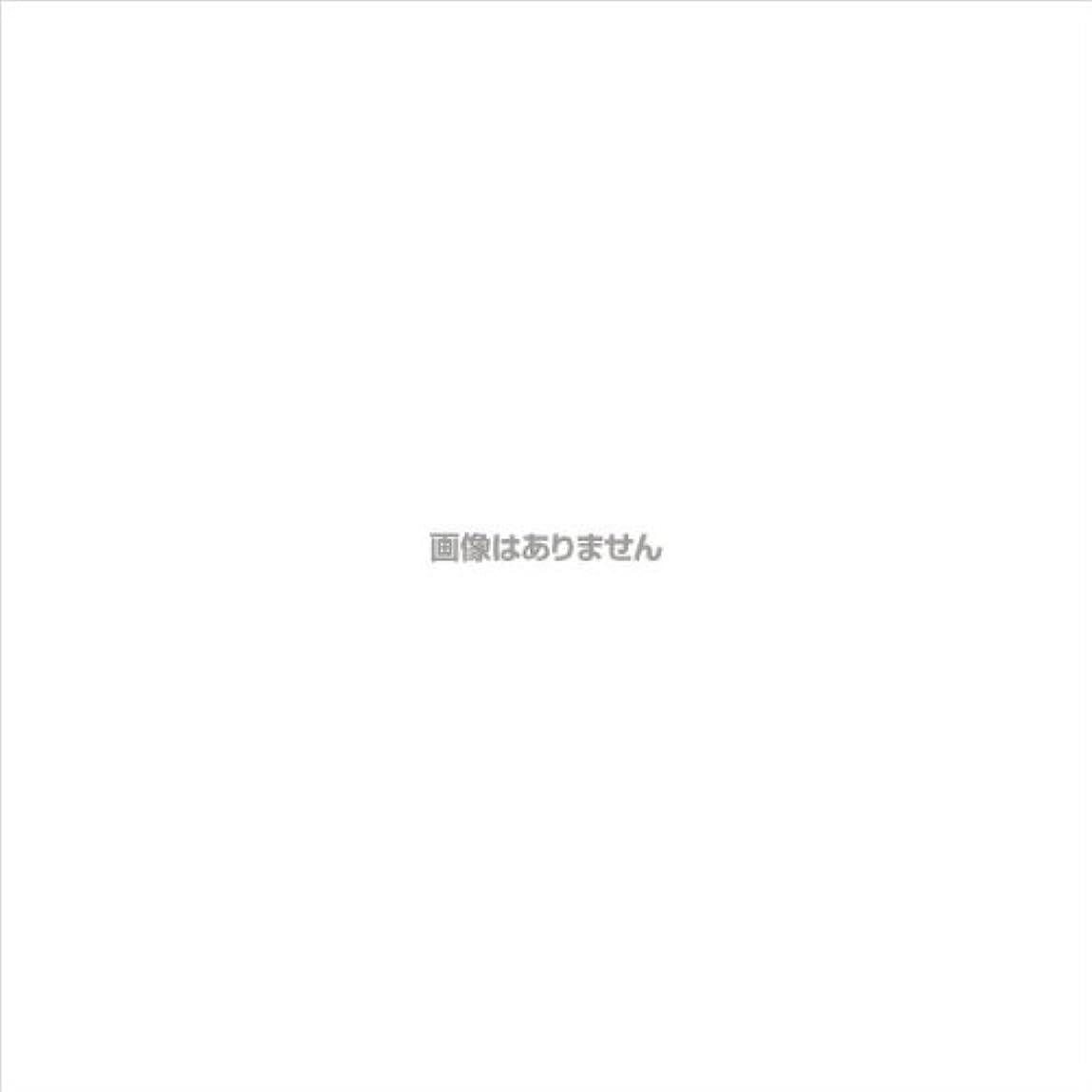 操作キャンパス無実PVCグローブα 粉つき クリア / FR-5113 200枚 L ケース(10小箱入)