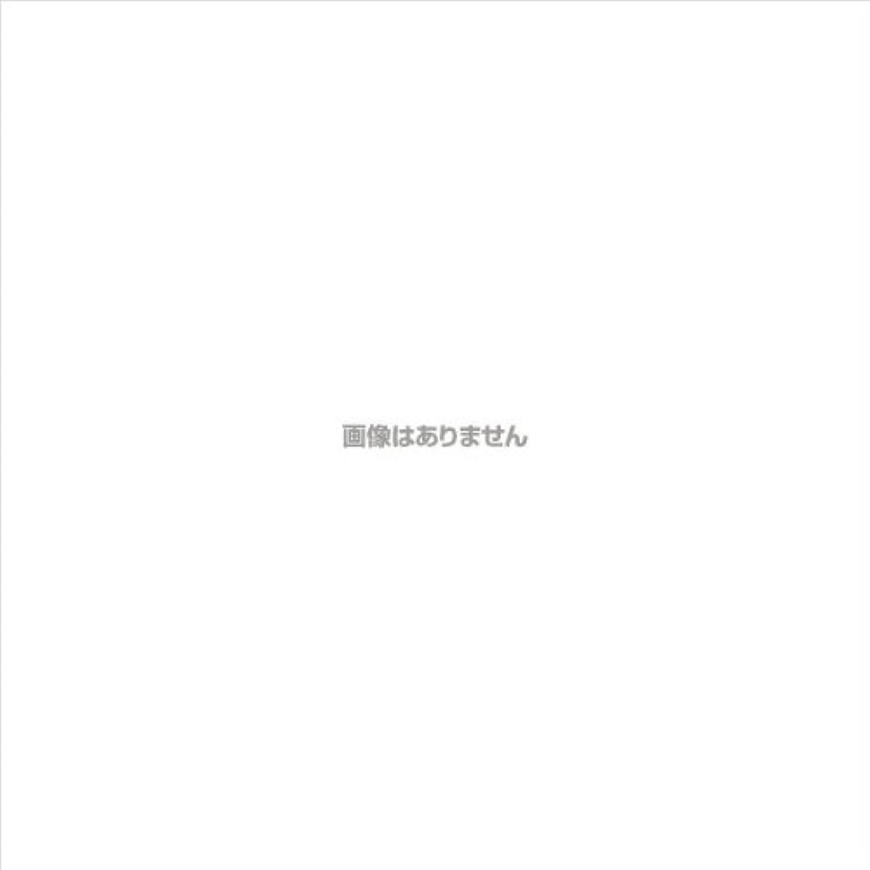 従者警戒有限ニトリルNEOプラス パウダーフリー / 574 L ホワイト 100枚入 ケース(20箱入)