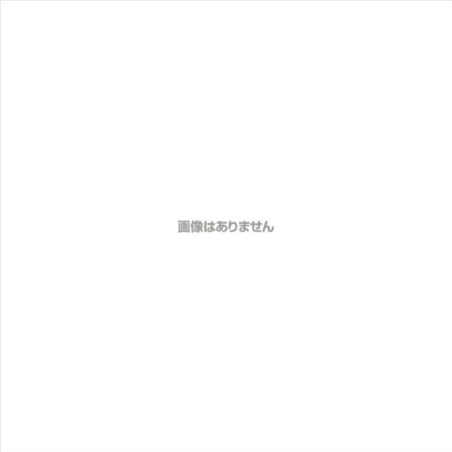 PVCグローブα 粉つき クリア / FR-5113 200枚 L ケース(10小箱入)