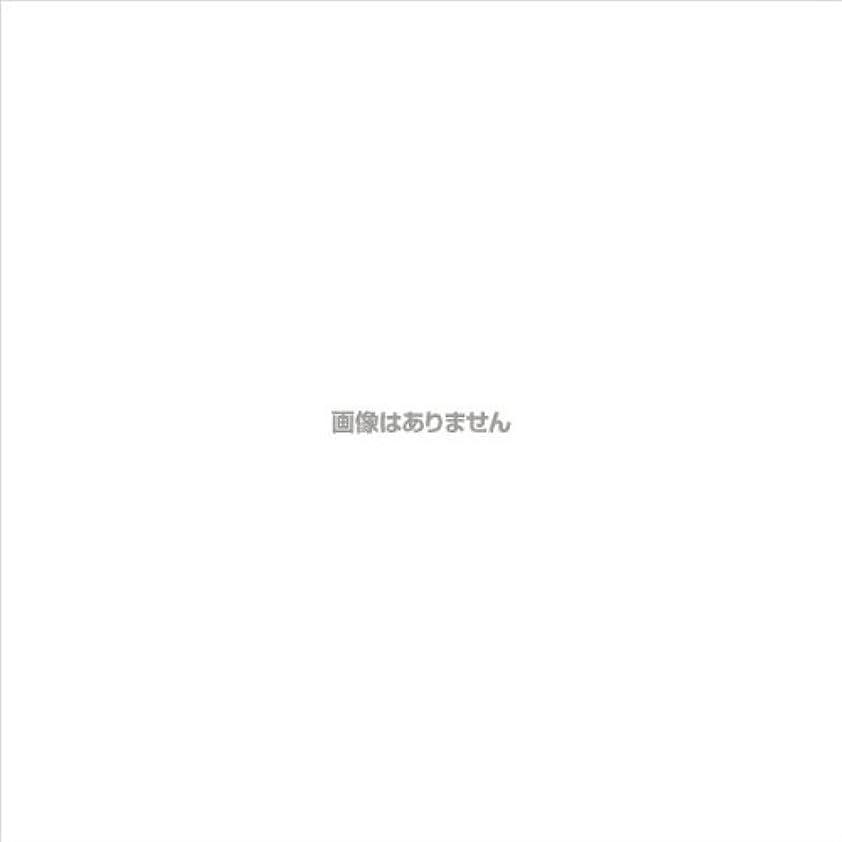スイレトルトスモッグPVCグローブα 粉つき クリア / FR-5113 200枚 L ケース(10小箱入)