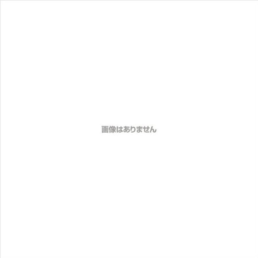 定規ドキドキ発音PVCグローブα 粉つき クリア / FR-5113 200枚 L ケース(10小箱入)
