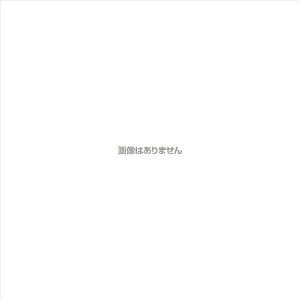 プレゼンテーションリングレット神聖ニトリルNEOプラス パウダーフリー / 574 L ホワイト 100枚入 ケース(20箱入)