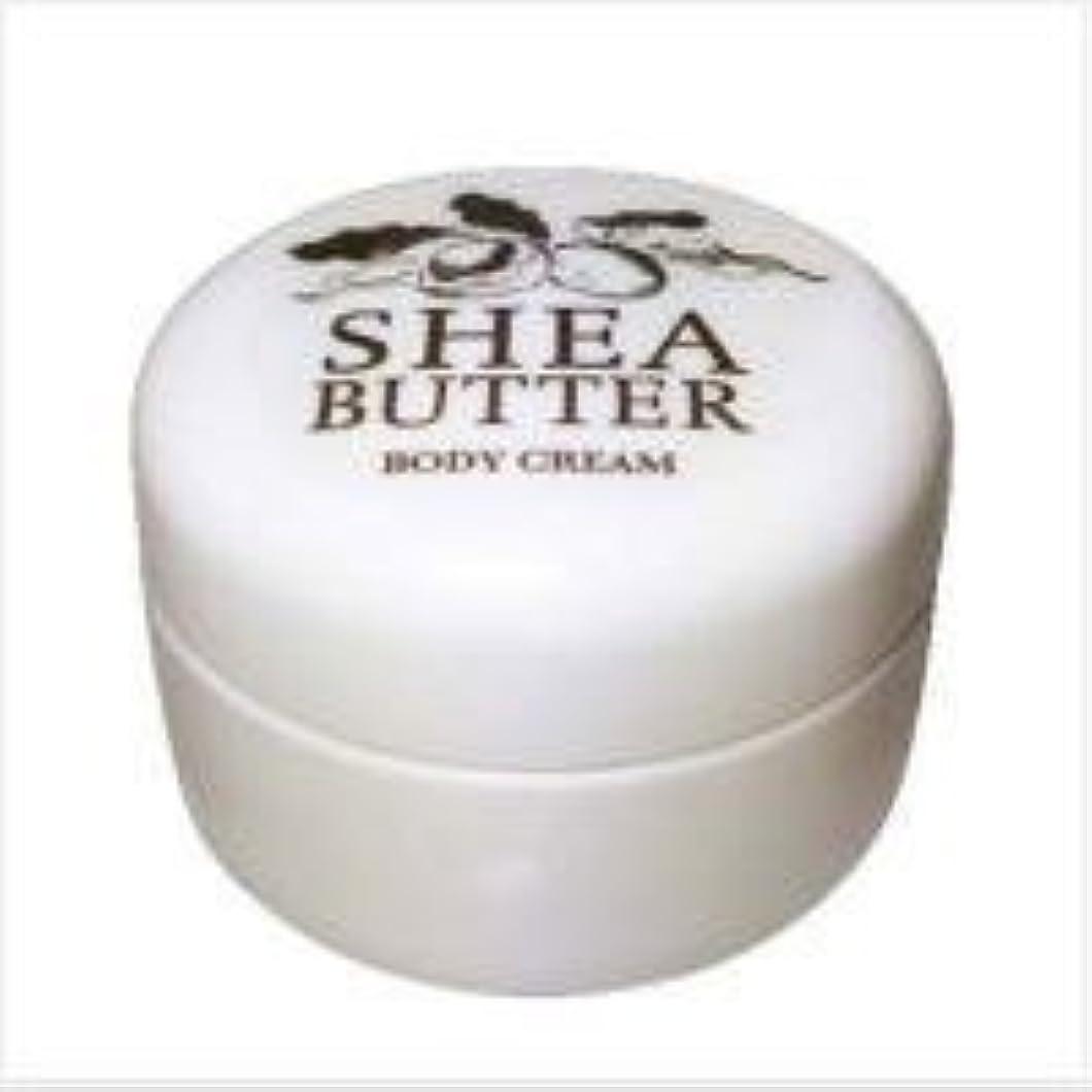一般気味の悪い後ろ、背後、背面(部生活の木 シアバター ボディクリーム 140g