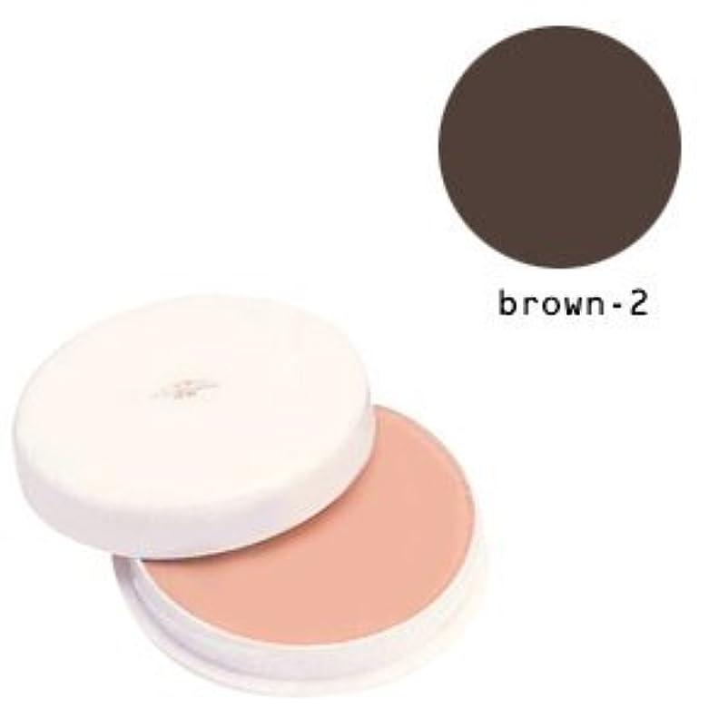 補充年齢剛性三善 フェースケーキ ブラウン-2(B)