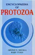 Encyclopaedia of Protozoa