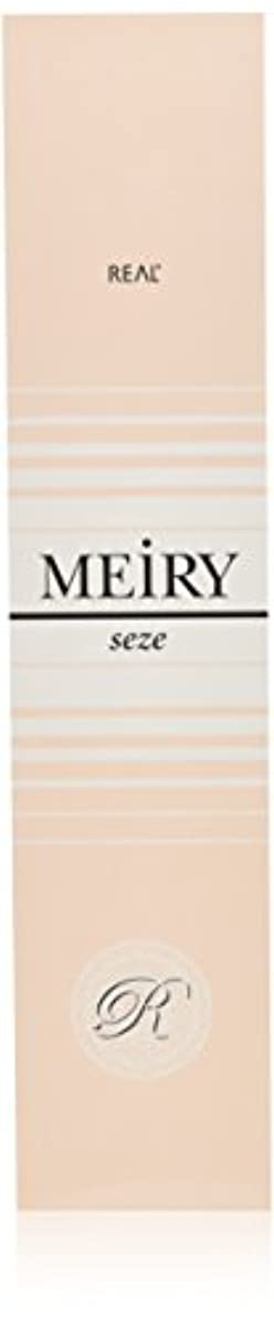 エッセンスチャンバー不均一メイリー セゼ(MEiRY seze) ヘアカラー 1剤 90g 6WB