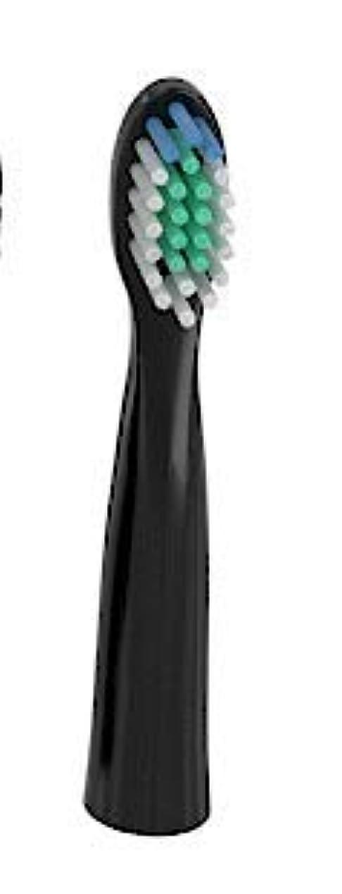 スケッチアーティスト芝生電動歯ブラシ IPX7完全防水 USB 充電式 音波歯ブラシ 替えブラシ 3モード 虫歯予防 歯垢除去 虫歯菌抑制 口臭予防 口内ケア
