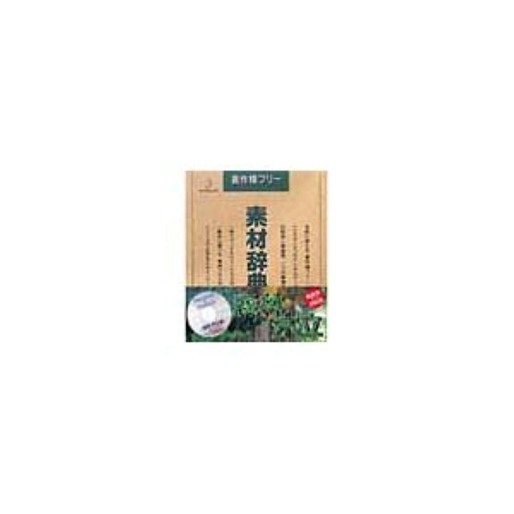 放棄された頻繁にパラダイス写真素材 素材辞典Vol.26 森林 木立