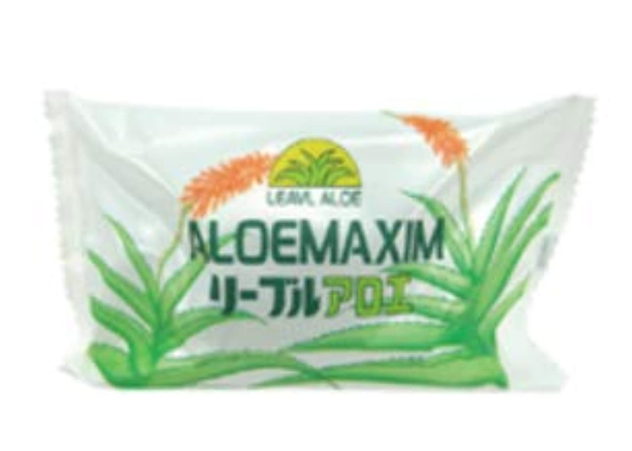 追い出す殺します知的フタバ化学 アロエマキシム アロエ石鹸 100g 100個セット 業務用石鹸