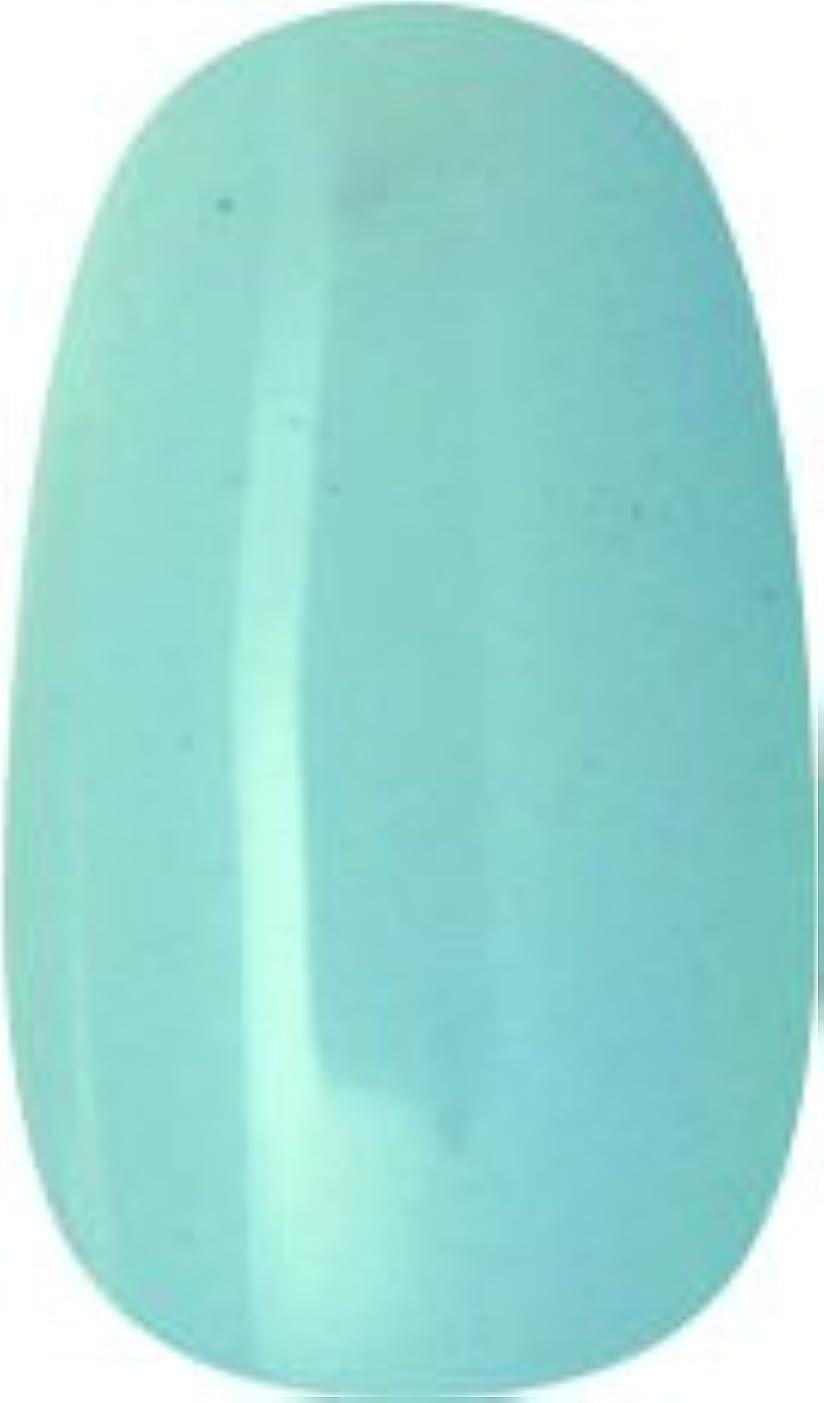 マニア眼顕微鏡ラク カラージェル(71-アイスアクアマリン)8g 今話題のラクジェル 素早く仕上カラージェル 抜群の発色とツヤ 国産ポリッシュタイプ オールインワン ワンステップジェルネイル RAKU COLOR GEL #71