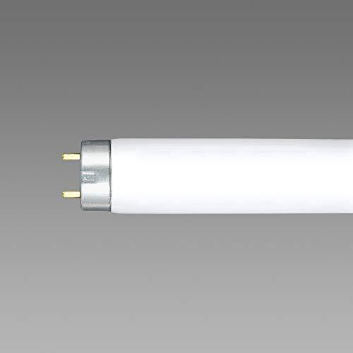 ライフライン 直管スタータ形 6W 白色 25本