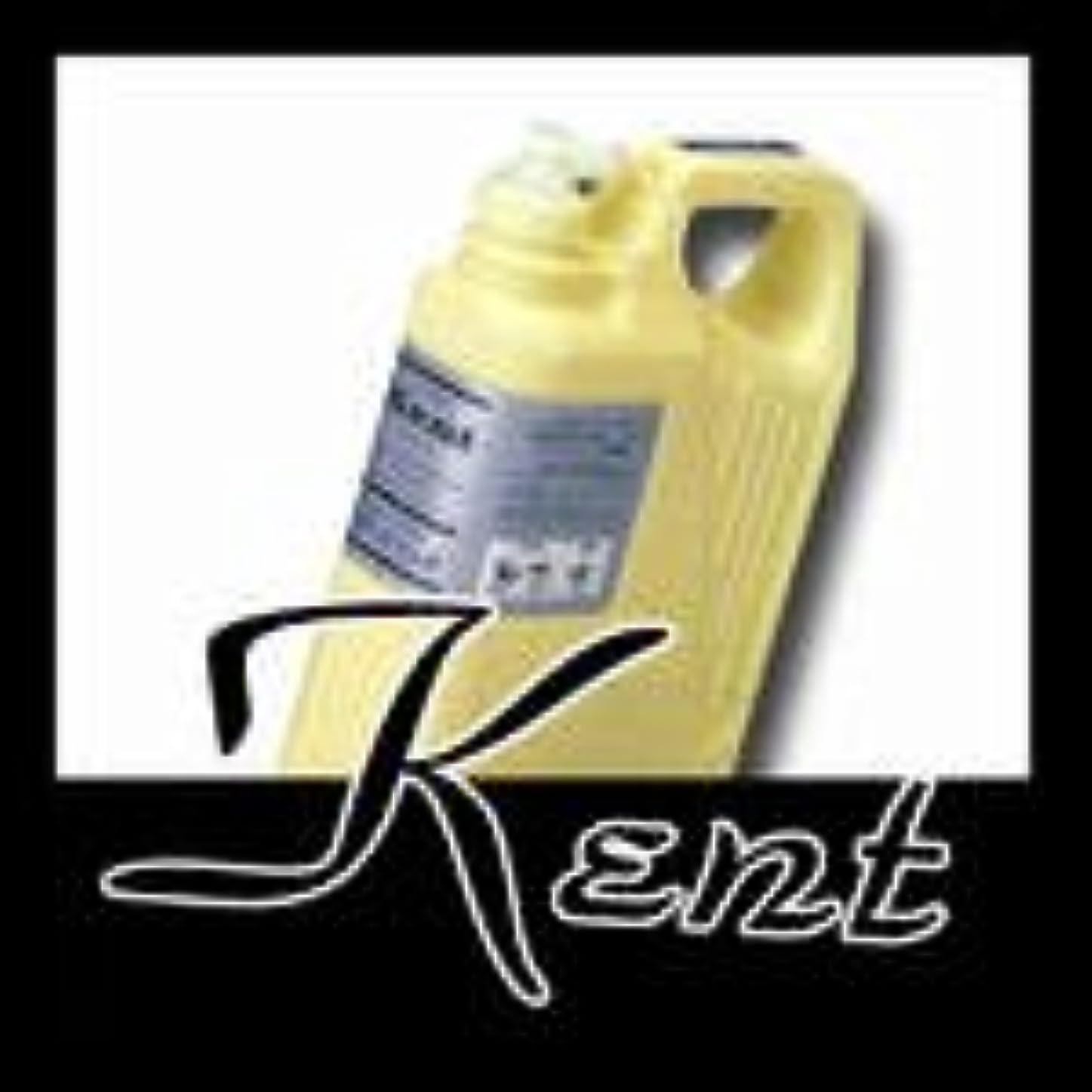 富うつバランスのとれたクラシエ KENT ケント ヘアー トニック 2000ml お徳用サイズ