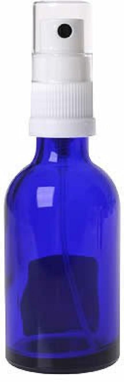 胚芽弁護適度な生活の木 青色ガラススプレー 50ml