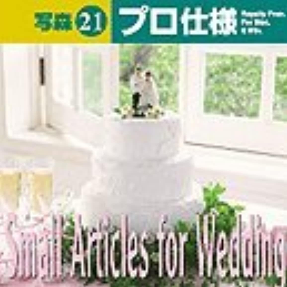 写森プロ仕様 Vol.21 Small Articles for Wedding