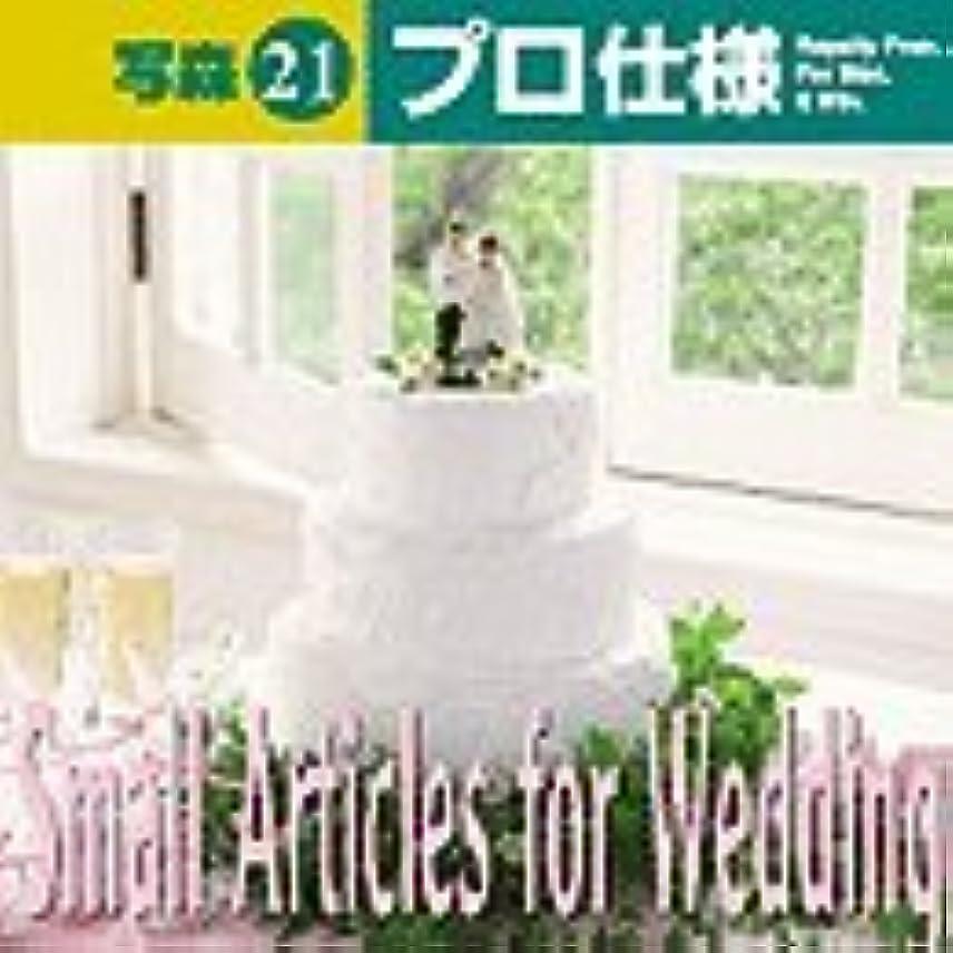 写森プロ仕様 Vol.21 Small Articles for Wedding