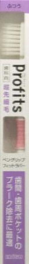 充電冊子防腐剤プロフィッツK31?ふつう1本×2 377