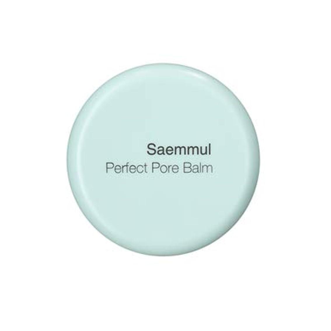 ハンカチ下位メロン【the SAEM】ザセム セムムル パーフェクト ポアバーム Saemmul Perfect Pore Balm 8g 韓国コスメ ポアカバー プレスト