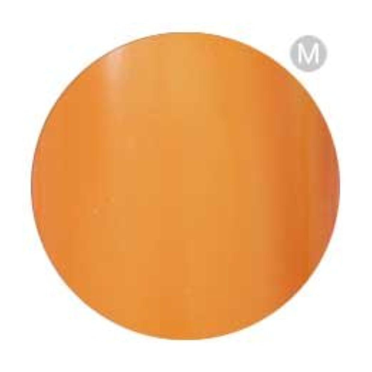 食料品店ホストめまいPalms Graceful カラージェル 3g 002 オレンジ