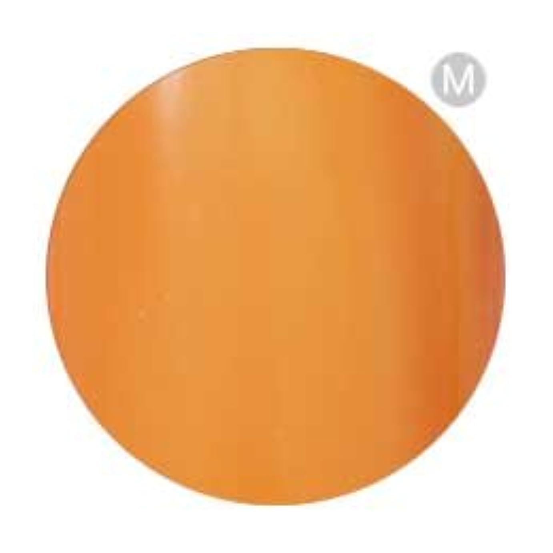 もう一度近く行動Palms Graceful カラージェル 3g 002 オレンジ