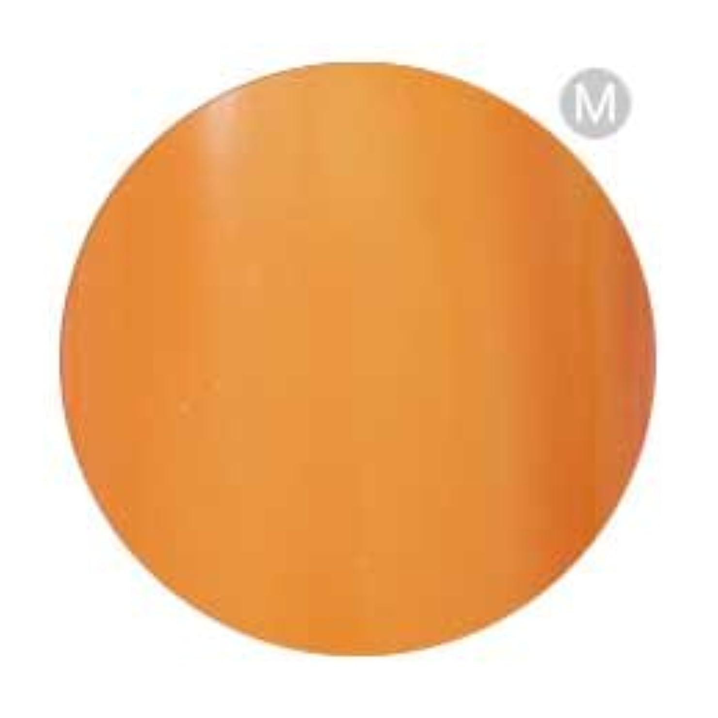 穀物放散する大量Palms Graceful カラージェル 3g 002 オレンジ