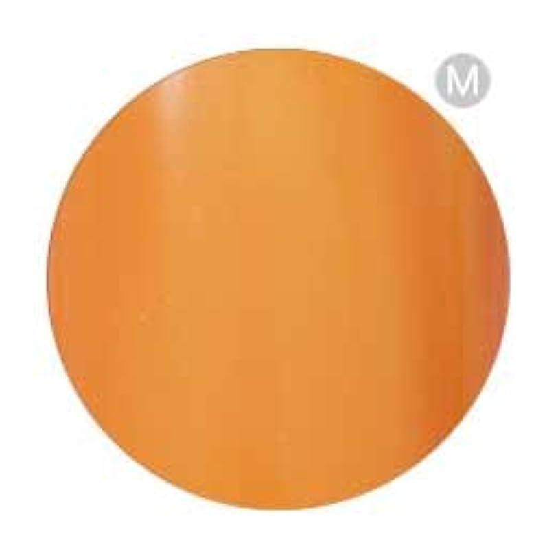 満員オーバーラン天使Palms Graceful カラージェル 3g 002 オレンジ