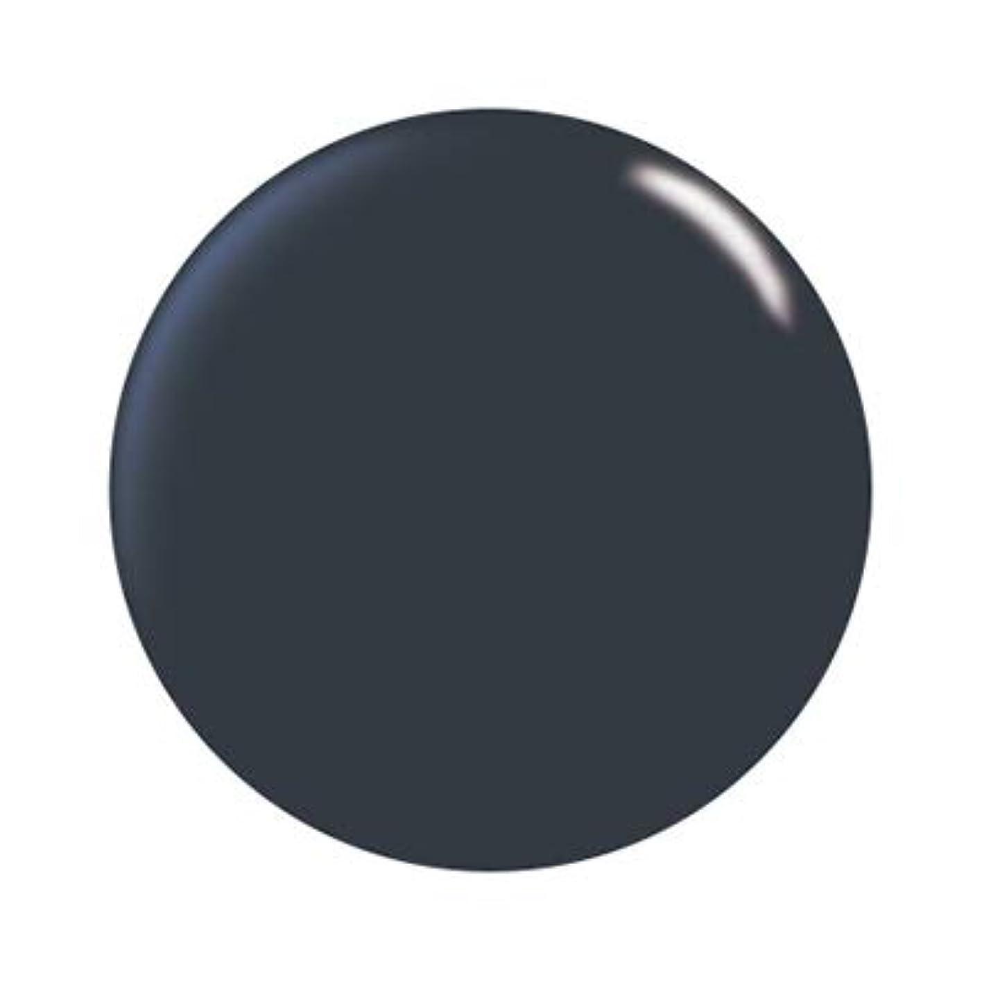 素朴なプーノ汚染パラジェル カラージェル DD05 ダークネイビー(神宮麻実プロデュース)