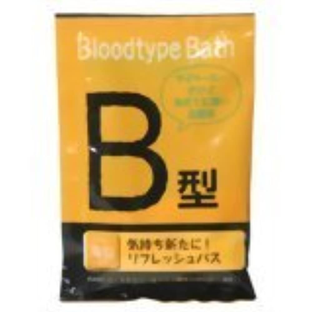 建てるシルク方程式紀陽除虫菊 ブラッドタイプバス B【まとめ買い12個セット】 N-8251