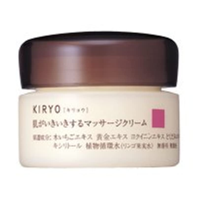タイマーロンドン束ねる【資生堂】キリョウ マッサージクリーム 100g