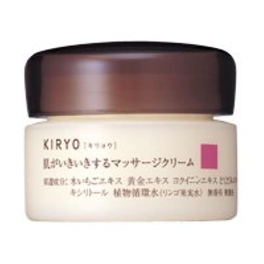 方法銀行リーク【資生堂】キリョウ マッサージクリーム 100g