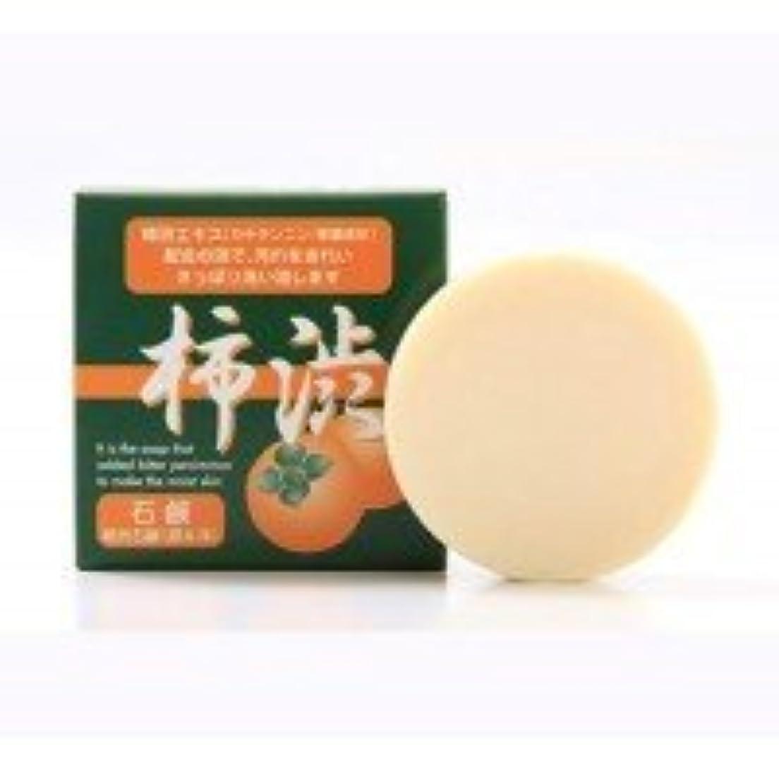 シンライ柿渋石鹸 100g 【人気 おすすめ 】