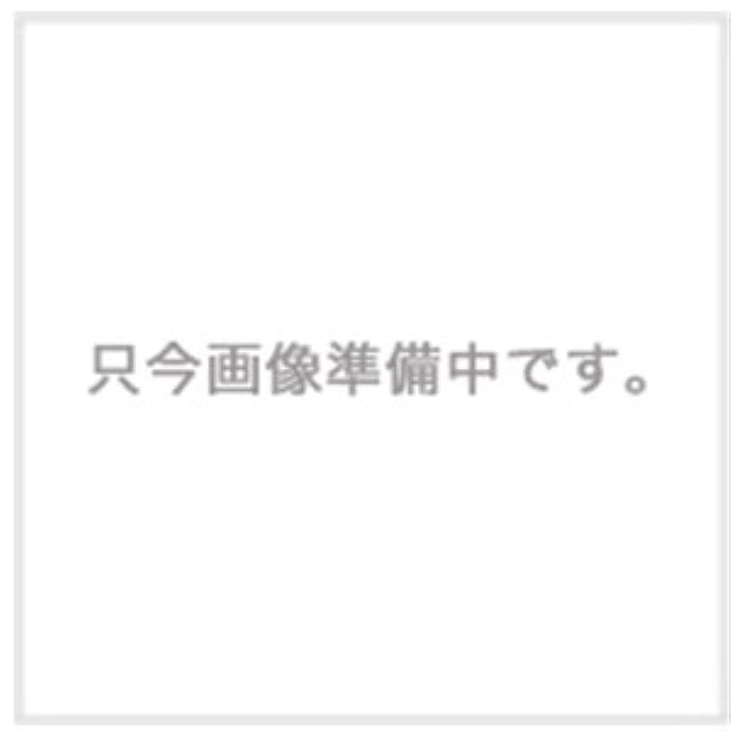 ハホニコ ザ?ラメラメ トリートメント No.1 1000g用ハードケース